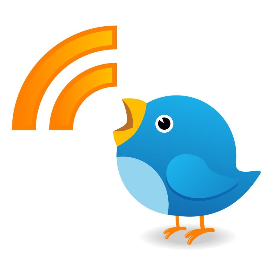 Twitter bird yelling